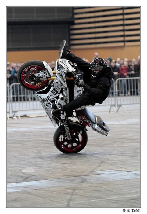 Salon de la moto de lyon 2014 salon de la moto de lyon 2014 - Salon de la photo lyon ...