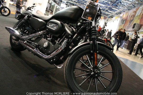 harley davidson sportster iron xl 883 au salon moto de lyon 2009. Black Bedroom Furniture Sets. Home Design Ideas